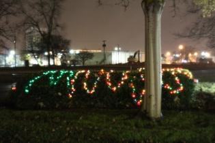 Quintard Median Christmas Lights 2018 (55)