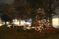 Quintard Median Christmas Lights 2018 (57)