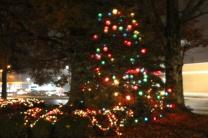 Quintard Median Christmas Lights 2018 (58)