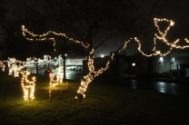 Quintard Median Christmas Lights 2018 (73)