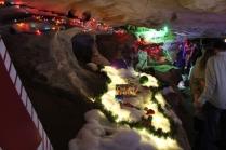 Rickwood Caverns Christmas 2018 (49)