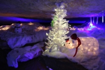 Rickwood Caverns Christmas 2018 (72)