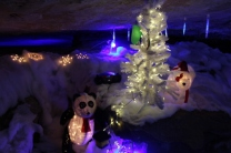 Rickwood Caverns Christmas 2018 (74)
