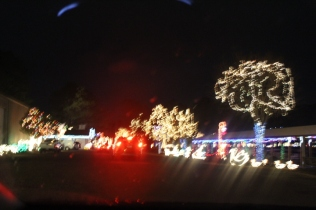 River Country Campground Christmas '18 (21)
