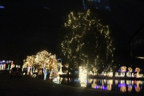 River Country Campground Christmas '18 (25)