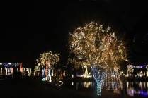 River Country Campground Christmas '18 (27)