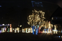 River Country Campground Christmas '18 (29)