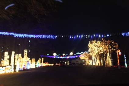 River Country Campground Christmas '18 (34)