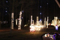 River Country Campground Christmas '18 (37)
