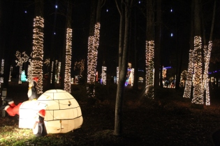 River Country Campground Christmas '18 (44)