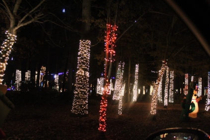 River Country Campground Christmas '18 (45)