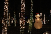 River Country Campground Christmas '18 (48)