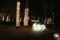 River Country Campground Christmas '18 (49)