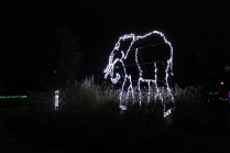 ZooLight Safari 2018 (26)