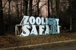 ZooLight Safari 2018 (43)