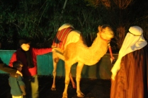 mountain brook baptist church living nativity '18 (4)