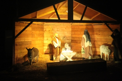 mountain brook baptist church living nativity '18 (9)