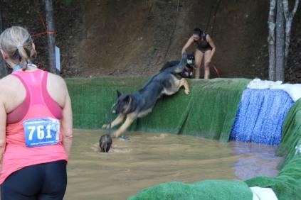 US Canine Biathlon 2019 (12)