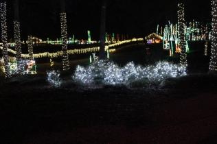 Christmas At The Falls 2019 (10)