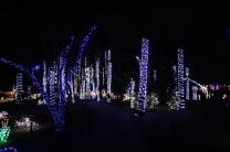 Christmas At The Falls 2019 (19)