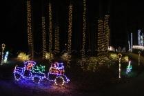 Christmas At The Falls 2019 (81)