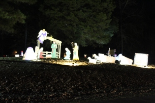 Pell City Christmas In The Park 2019 (11)